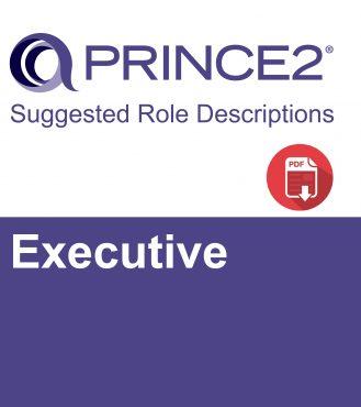 P2 Suggested Role Descriptions - Executive-01