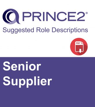 P2 Suggested Role Descriptions - Senior Supplier-01