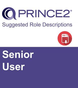 P2 Suggested Role Descriptions - Senior User-01